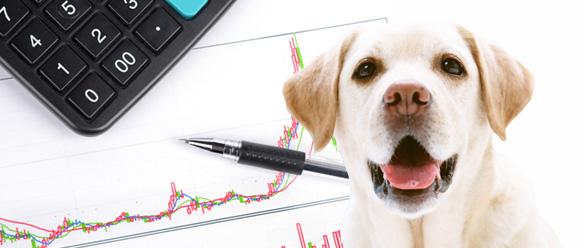 掛金の構造を知ると、お得なペット保険が見えてくる